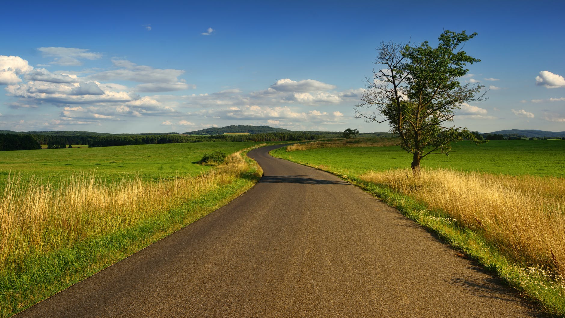 photo of road in the middle of the grass field